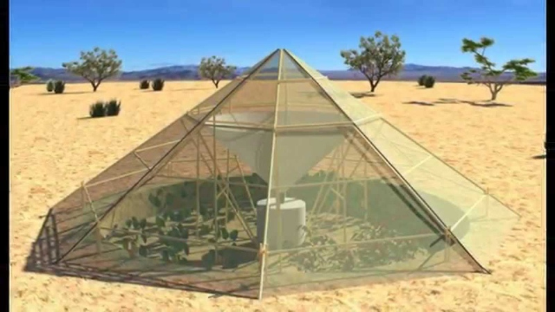 Dew-Collecting Greenhouse Grows Veggies in the Desert - 10-05-2015