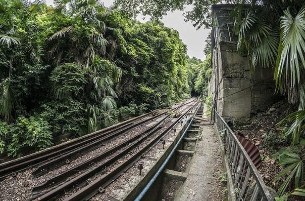 Оказывается, в Сочи есть свое метро Правда, соединяет оно вовсе не разные районы города между собой, а пляж с санаториями. Сочинский фуникулер состоит из двух линий. Обе они были построены в