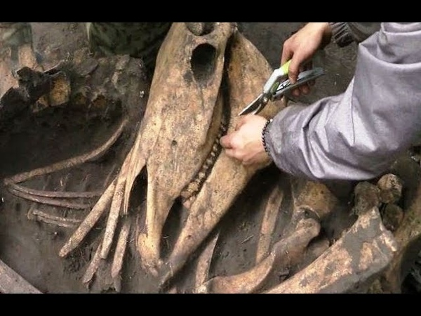 Праболгары и ранние гунны - сенсационное захоронение под Тюменью