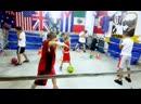 Romanov Team Boxing Club