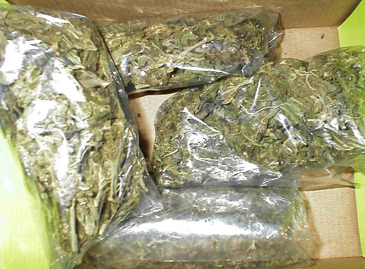 Под Таганрогом сотрудники ОКОН задержали мужчину с четырьмя пакетами марихуаны
