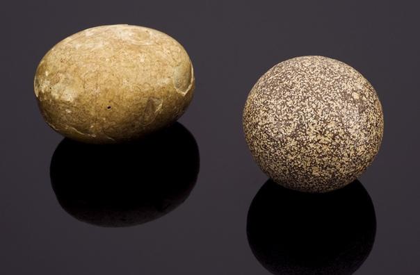 Этот шарик, больше похожий на клубок пряжи или часть валяной игрушки, на самом деле содержимое коровьего желудка  безоар