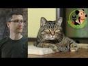 20.07.19 Ветеринар и кот Сэмыч в прямом эфире отвечаем на вопросы о собаках и кошках