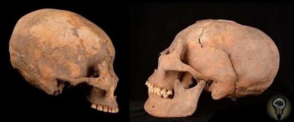 В Китае найдены вытянутые черепа возрастом 12000 лет