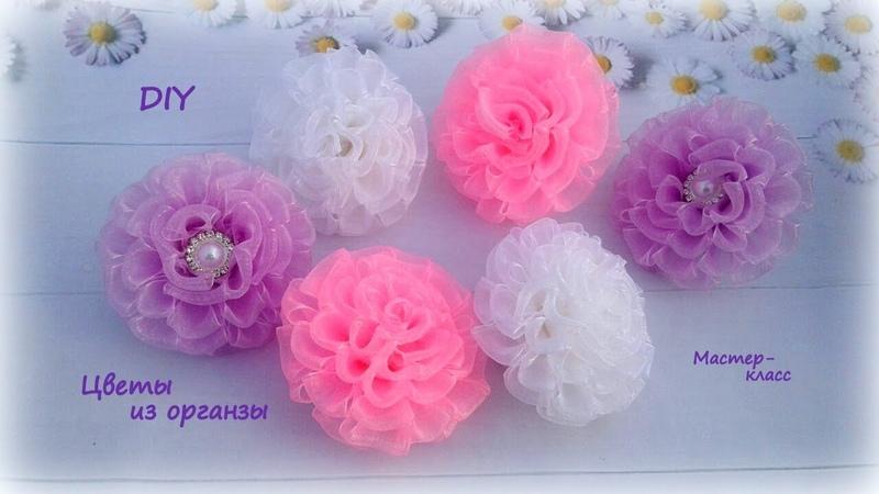 🌺 Цветы из органзы 🌺 Резиночки для волос 🌺 Канзаши 🌺 DIY 🌺 Hand мade 🌺 Kanzashi 🌺