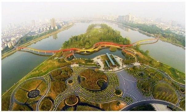 Города-губки будут налаживать микроклимат в Германии и Китае