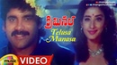 Telusa Manasa Full Video Song Criminal Movie Songs Nagarjuna Manisha Koirala Ramya Krishna