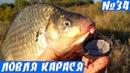 Крупные караси на Пробку Рыбалка на карася Осенью