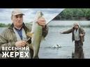 Ловля жереха весной на Гранку, Ромбик и Торпедку