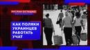 Как поляки украинцев работать учат Руслан Осташко