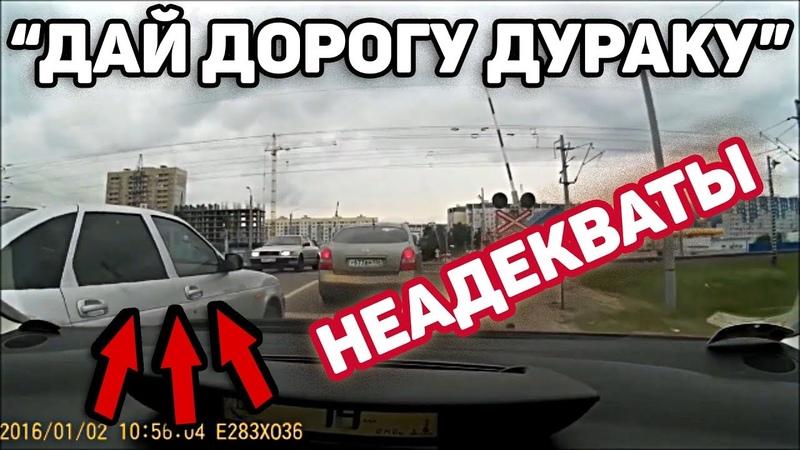 Автоподборка Дай дорогу дураку Быдло водители-Неадекваты44