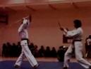 Hapkido demo 2 - Master Hwang In Sik