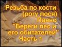 Резьба по кости рогу лося Панно Береги мир растений и животных
