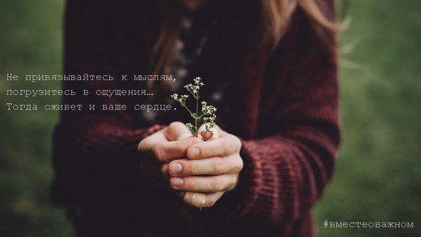 Не привязывайтесь к мыслям, погрузитесь в ощущения
