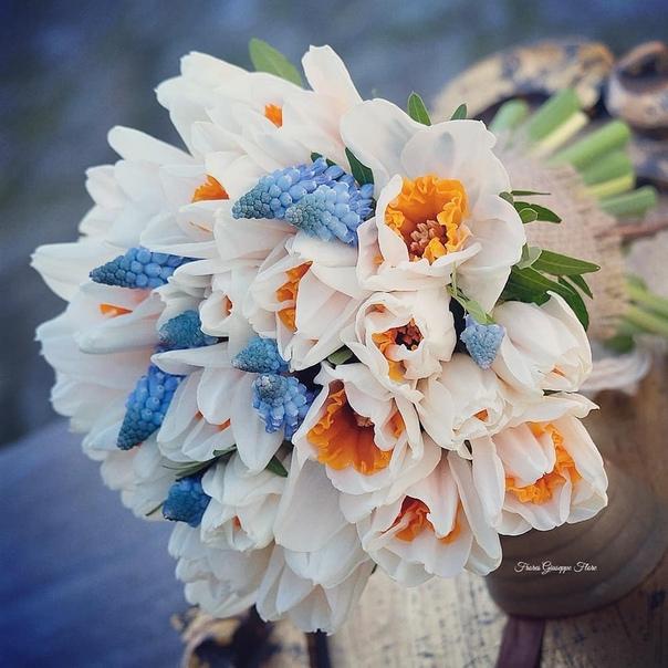Дорогие подписчицы, Поздравляем вас с Международным женским днём!8 марта - это определённый водораздел года, это приход весны!Праздник, который приобрёл многогранное звучание. Мы желаем вам