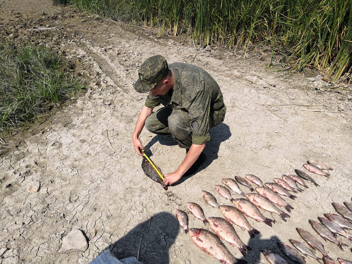 В Таганрогском заливе пограничники задержали браконьеров с уловом на сумму 100 тыс. рублей