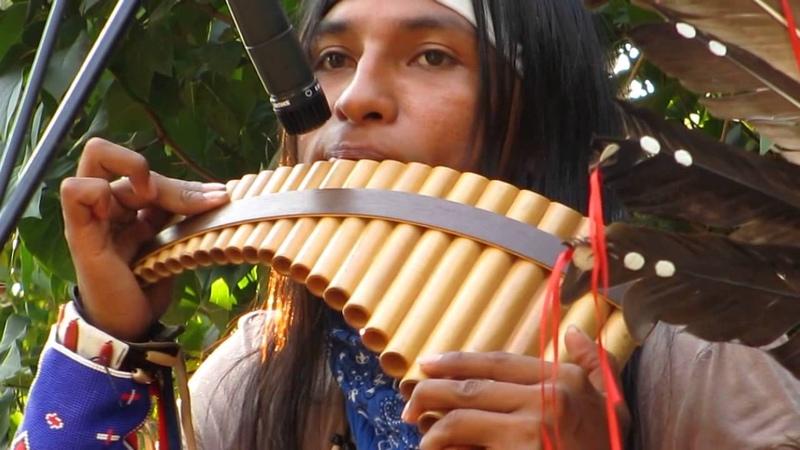 Ecuador Spirit Wuauquikuna Pastor Solitario 18.08.13