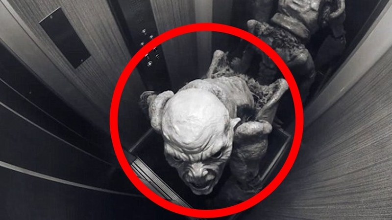 5 Scary Creatures Caught in Unusual Places