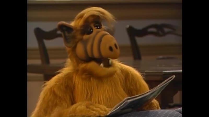 Alf Quote Season 4 Episode 2 Расстроен