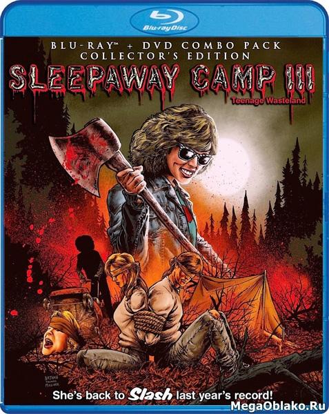 Спящий лагерь 3: Безлюдная территория / Sleepaway Camp III: Teenage Wasteland (1988/BD-Remux/BDRip/HDRip)