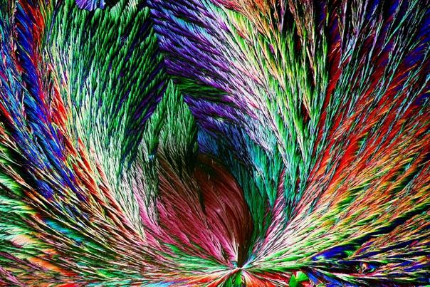 Лимонная кислота, кристаллизованная на предметном стекле микроскопа. Раньше ее получали из сока лимона и листьев махорки, сейчас основной метод промышленного производства биосинтез из