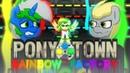 Pony Town Rainbow Factory 3
