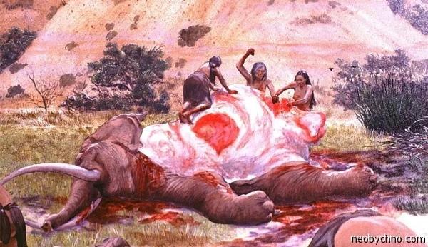 МЯСО СЛОНА Ножка слоника чем не деликатес Ели же наши давние предки забитых ими на сибирских просторах мамонтов.В 1864 году, изучая Мозамбик, шотландский миссионер Дэвид Ливингстон удостоился