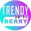 САДОВОД TrendyBerry 2В-39