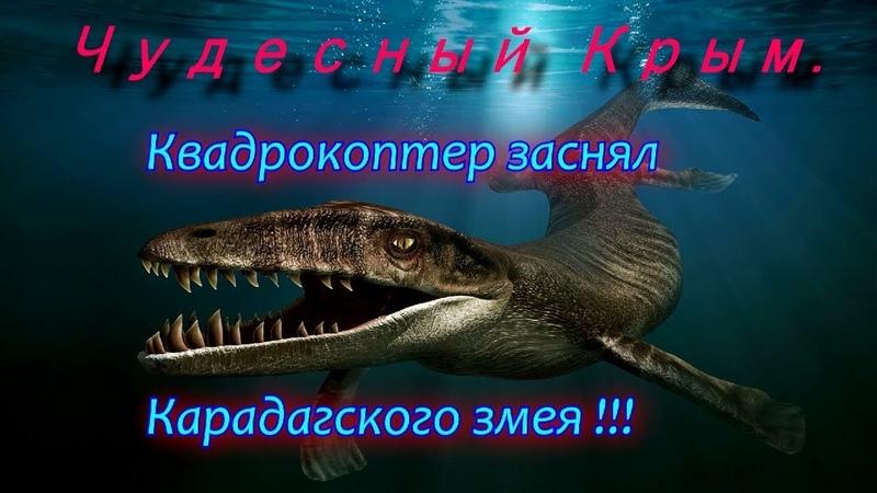 Чудесный Крым. Квадрокоптер заснял Карадагского змея