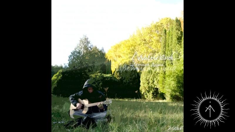 Лисьи Сны - Sunspirit night (feat. Unusual Cosmic Process, live) - Ambient, Psy, Chill, Instrumental
