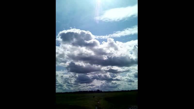VID_20190712_123057 нас тучи обходили стороной и солнце светило над всей территорией- ВЫСТАВКА ПОЛЕ 2019г.