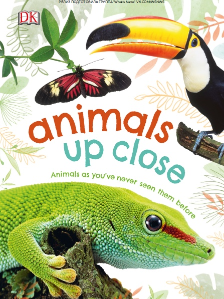 Animals Up Close: Animals As You've Never Seen Them Before