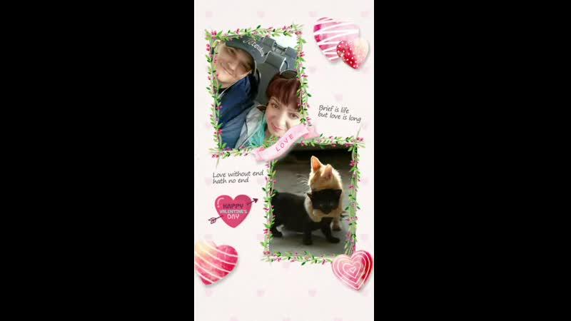 Video_1563180179388.mp4