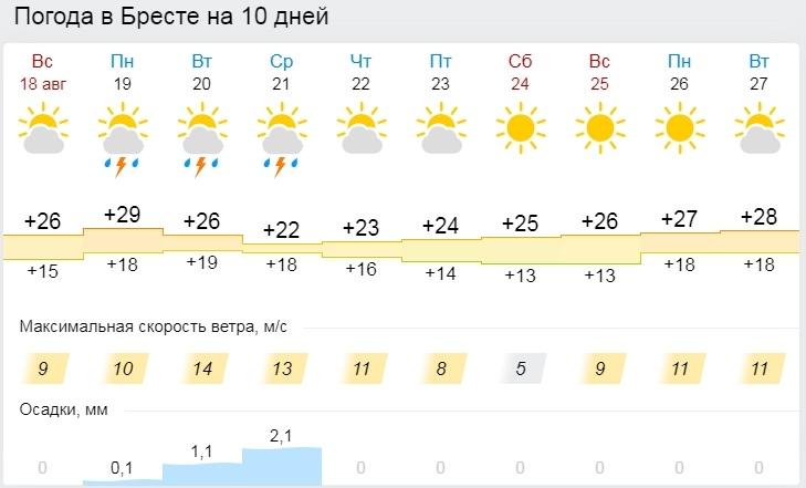 Жара возвращается в Беларусь: 19 августа местами будет до +31°С