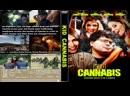 Конопляновый Пацан / Kid Cannabis 2014 Перевод ДиоНиК