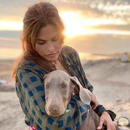 Ева Мендес и Райан Гослинг взяли собаку из приюта