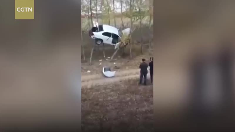 Crashed_car_trapped_in_trees_in_China(720p).mp4
