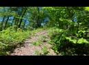 Бег по горам на высоте около 1000 метров Сочи