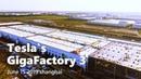 Tesla Gigafactory 3 in Shanghai China June 15 2019