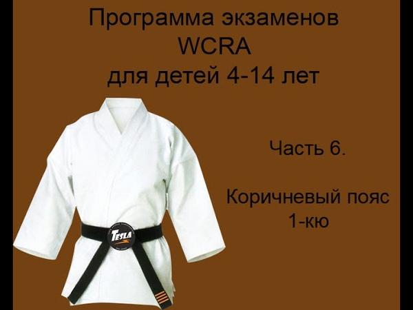 Детская программа экзаменов на пояса в Реальном айкидо на коричневый пояс