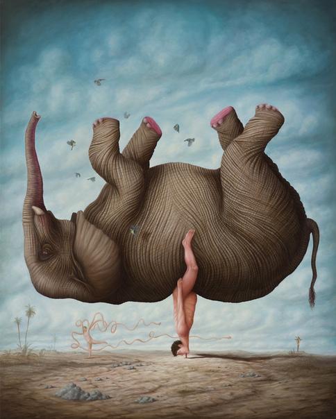 Странное: бегемоты, кони и другие животные стоят на головах, языках и рогах