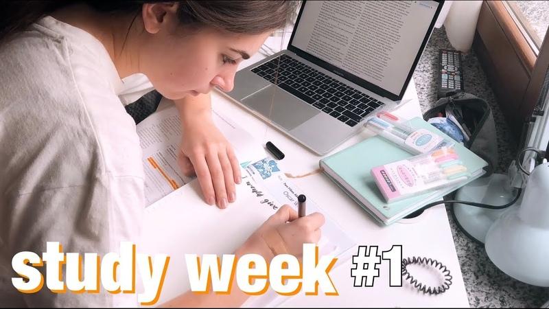 STUDY WEEK| День 1 | study with me| мотивация|продуктивность