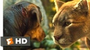 A Dogs Way Home 2018 - Big Kitten Returns Scene 7/10 Movieclips