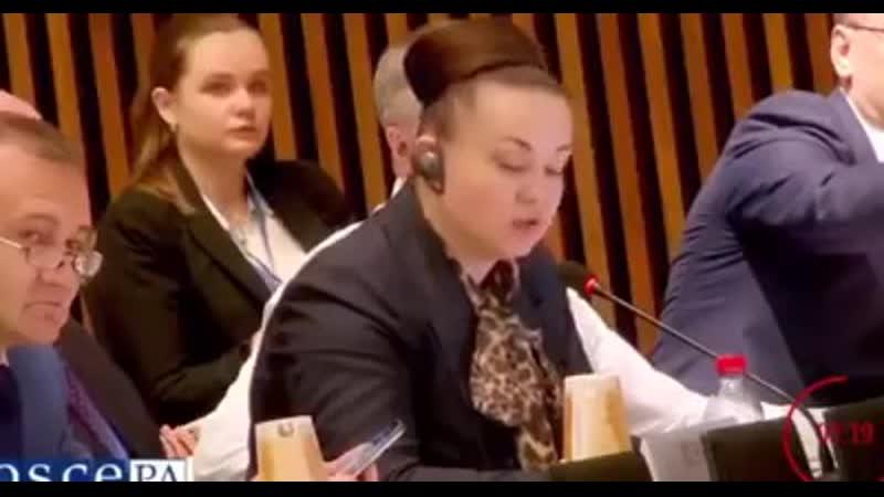 Видела бомбы из космоса! Россиянка опозорилась фейком об Украине в ОБСЕ