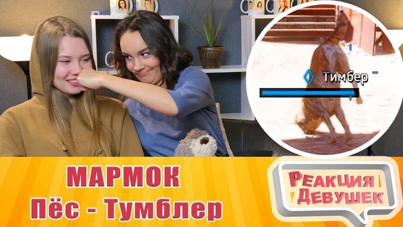 Реакция девушек - МАРМОК Far Cry New Dawn Баги, Приколы, Фейлы. Реакция