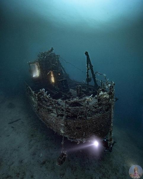 Подводный красочный мир