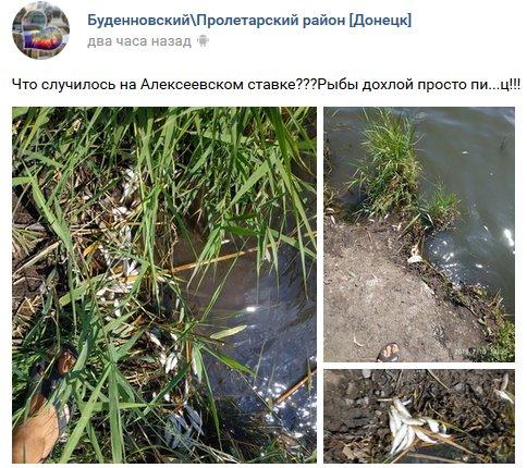 В Донецке под носом у боевиков случилось экологическое ЧП: фото