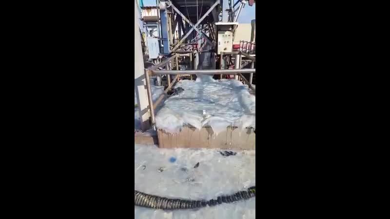 Электростанция на юге Израиля не справляется с волной из миллионов медуз, которые забивая охладительные резервуары нарушают ее р