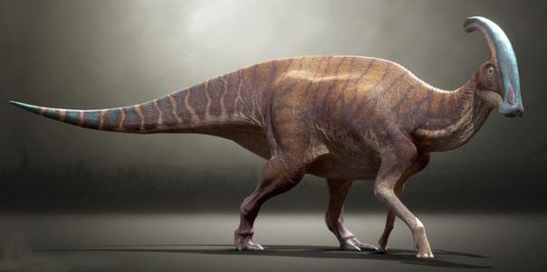 КАКАЯ БЫЛА ПРОДОЛЖИТЕЛЬНОСТЬ СУТОК И ГОДА ВО ВРЕМЕНА ДИНОЗАВРОВ Динозавры жили сотни миллионов лет назад, из-за чего современные ученые, изучающие то время, могут лишь строить гипотезы о том,