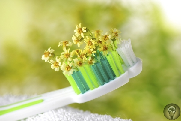 Знахарские методы лечения зубов
